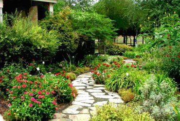 Taman-Rumah-Minimalis-Taman-Bunga-Indah-1.jpg